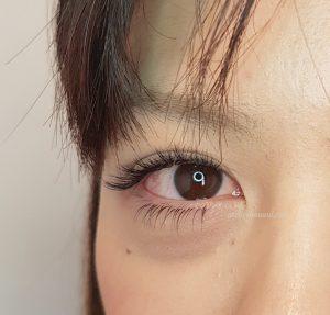 eyelash extensions upper + bottom